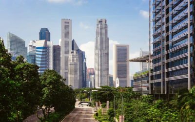 El Valor de los Espacios Verdes Urbanos